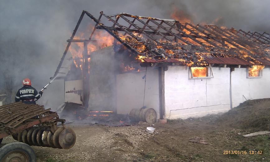 Sase vite au ars de vii intr un incendiu | imaginea 1