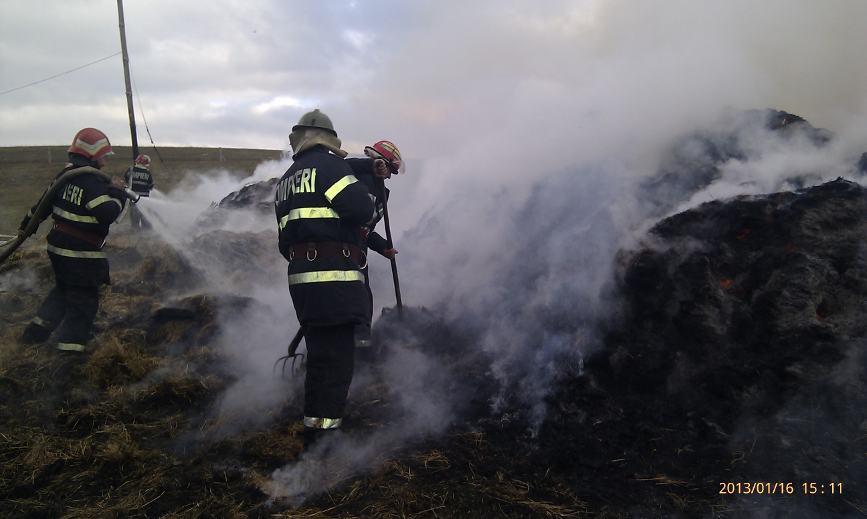 Sase vite au ars de vii intr un incendiu | imaginea 2