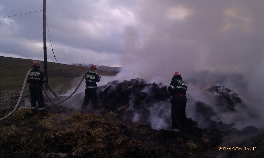 Sase vite au ars de vii intr un incendiu | imaginea 3