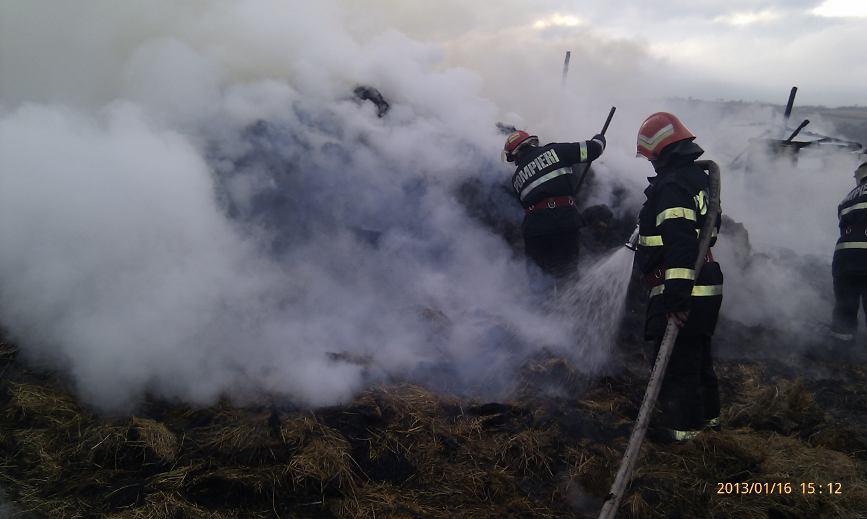 Sase vite au ars de vii intr un incendiu | imaginea 4