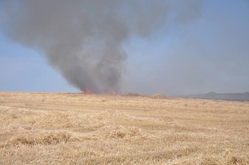 Iadul dezlantuit  30 de hectare de orz si 20 de hectare de miriste cuprinse de flacari | imaginea 2
