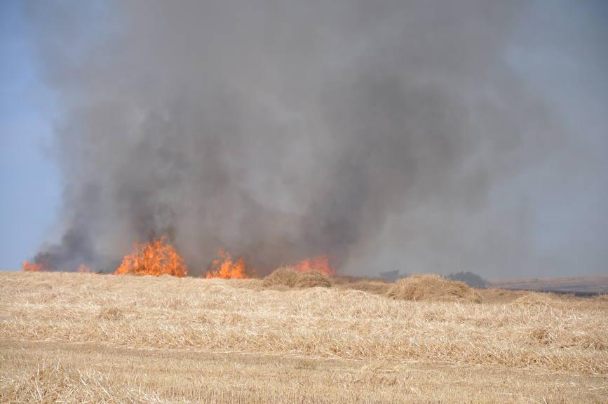 Iadul dezlantuit  30 de hectare de orz si 20 de hectare de miriste cuprinse de flacari | imaginea 3