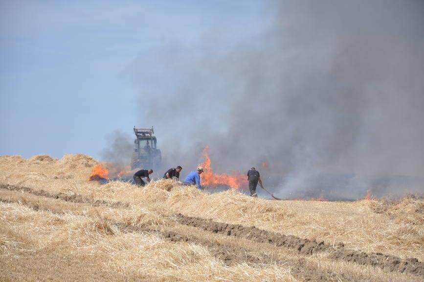 Iadul dezlantuit  30 de hectare de orz si 20 de hectare de miriste cuprinse de flacari | imaginea 5